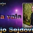 Mujo Sejdovic - 2019 - Jala vala