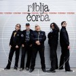 Riblja Corba - 2012 - Monetarni Udar