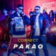 Connect - 2019 - Pakao