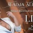 Sladja Allegro - Zaplakacu sutra  2017