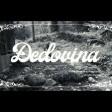 Who See - 2019 - Djedovina