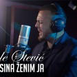 Djole Stevic - 2020 - Sina zenim ja