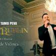 Ibro Bublin - 2021 - Ko to tamo peva (COVER)