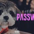 Vjestica x Coja - 2020 - Password