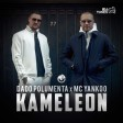 Dado Polumenta & MC Yankoo - 2021 - Kameleon