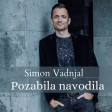 Simon Vadnjal - 2020 - Pozabila navodila