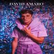David Amaro - 2020 - Raj