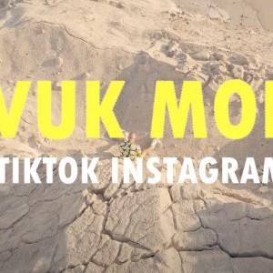 Vuk Mob - 2020 - TikTok Instagram