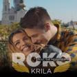 Roko feat. The Messengers - 2019 - Krila